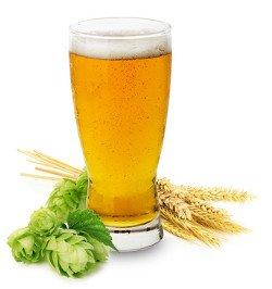 Die wichtigsten Infos über den alkoholbedingten Kater